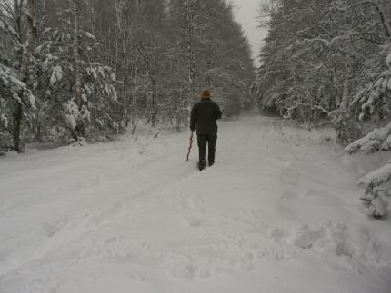 Stroper op weg naar huis - Foto: ©Fransien Fraanje