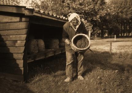Imker bij bijenstal Foto: Louis Fraanje