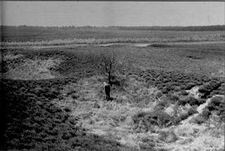 IJzerkuilen op de Asselsche Heide (midden op de foto J.D. Moerman.)