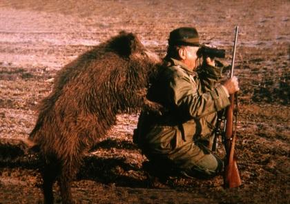 """Zwijn kijkt mee over de schouder van de jager en fluistert:  """"Dat varken daar links aan de bosrand, dat is mijn broertje, die mag je niet schieten!""""  Ziet u het al voor u, het zal je maar gebeuren?"""
