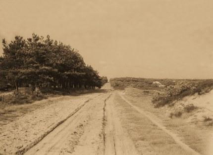 De oude Hessenweg op de Veluwe in 1925 - Foto: Jac. Gazenbeek klik om te vergroten