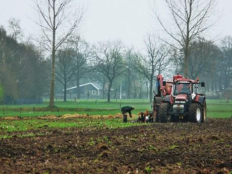 Het vereist stuurmanskunst om zo'n grote landbouwmachine langs de nesten te manoeuvreren (Klik om te vergroten)