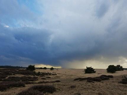 Donkere regenwolken