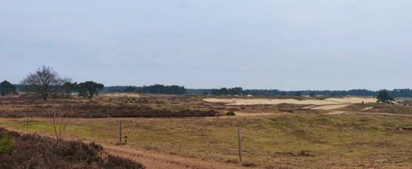 Het Wekeromse Zand nu - Foto: Louis Fraanje