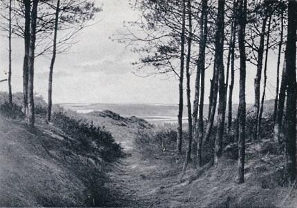 Bij het begin van den Wildwal (Goudsberg-Lunteren)
