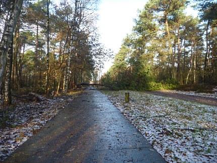 Elspeet-Harderwijk-fiets_2012-12-06_n01