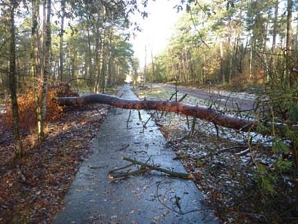 Elspeet-Harderwijk-fiets_2012-12-06_n02