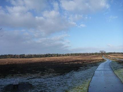 Elspeet-Harderwijk-fiets_2012-12-06_n05