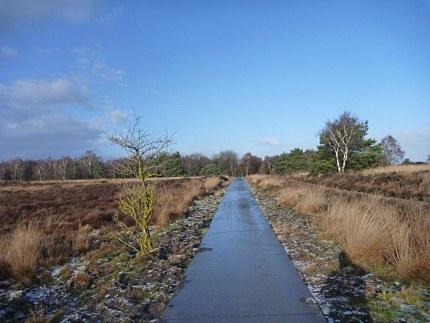 Elspeet-Harderwijk-fiets_2012-12-06_n06