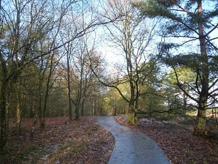 Elspeet-Harderwijk-fiets_2012-12-06_n10
