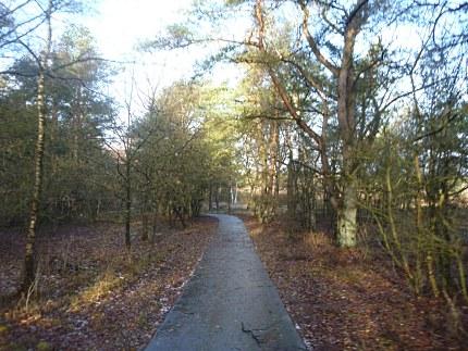Elspeet-Harderwijk-fiets_2012-12-06_n11
