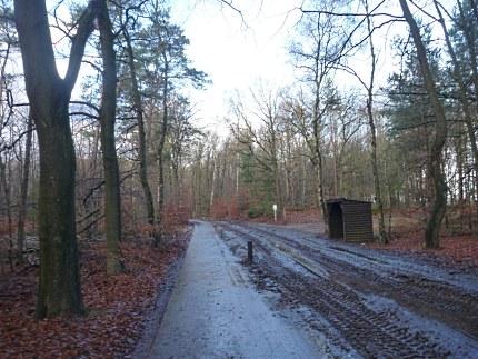Elspeet-Harderwijk-fiets_2012-12-06_n17