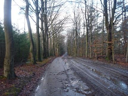Elspeet-Harderwijk-fiets_2012-12-06_n20