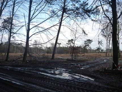 Elspeet-Harderwijk-fiets_2012-12-06_n21