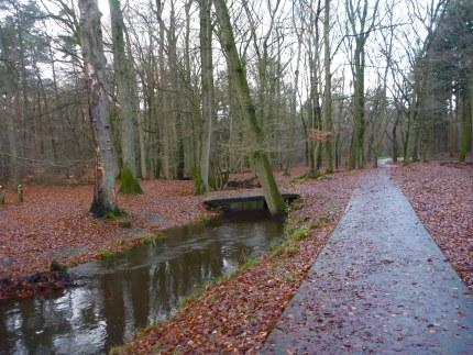 Elspeet-Harderwijk-fiets_2012-12-06_n30