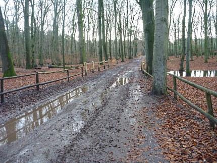 Elspeet-Harderwijk-fiets_2012-12-06_n33