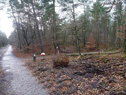 Elspeet-Harderwijk-fiets_2012-12-06_n36