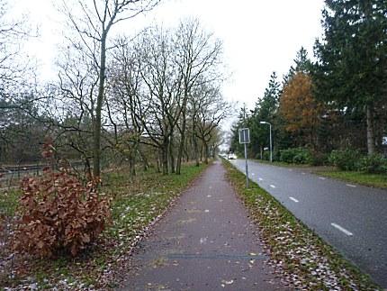 Elspeet-Harderwijk-fiets_2012-12-06_n59