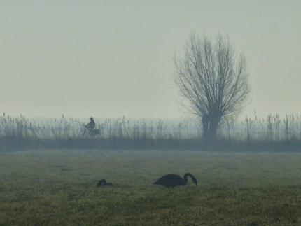 Aan de horizon kwam een eenzame fietser langs (klik om te vergroten)