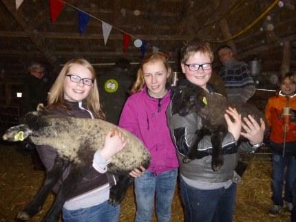 foto: Stichting Schaapskudde Gemeente Nunspeet