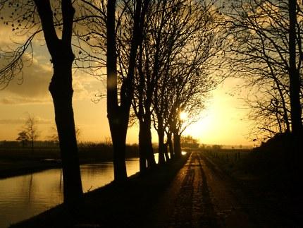 zie ik tussen de bomen langs de oude vaart, de zon steeds hoger klimmen - Foto: ©Louis Fraanje
