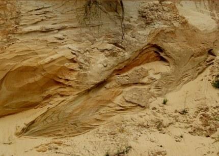 Geomorfologie van Lunteren en omgeving deel 5 - De Veluwenaar