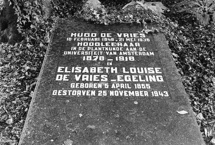 Het graf van Hugo de Vries op de begraafplaats van Lunteren