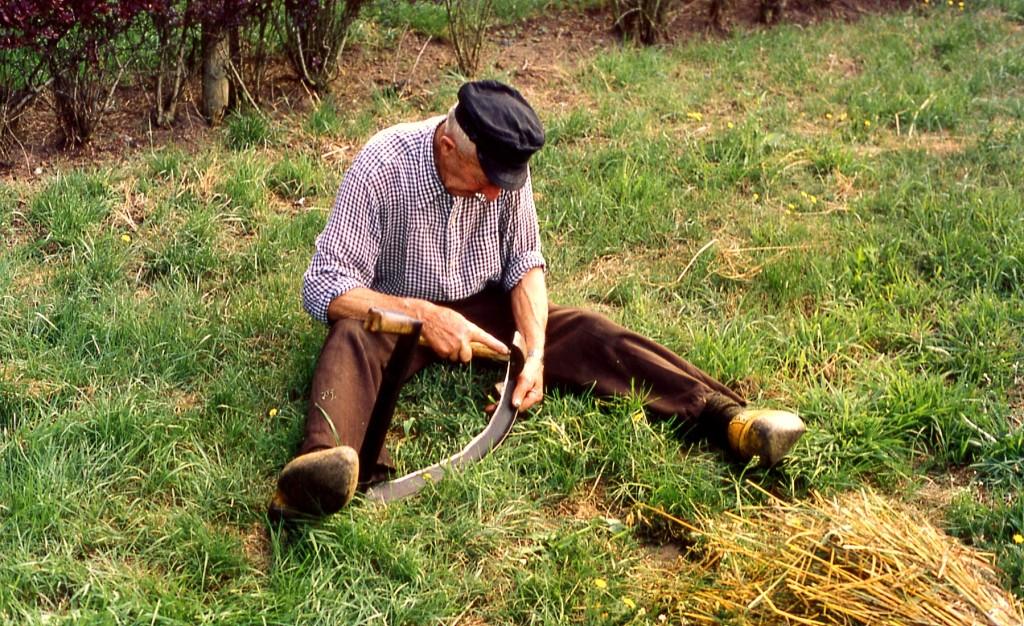 Boer is zijn zicht aan het haren - Foto: ©Louis Fraanje