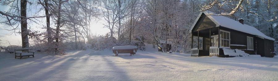 tjerne sneeuw(1)
