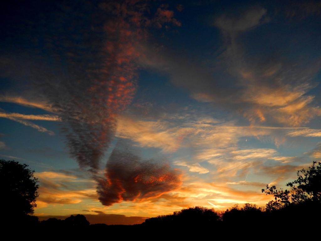 DSCN6988-kl-web  Het leek wel een grote mega-waaier – Foto: ©Louis Fraanje