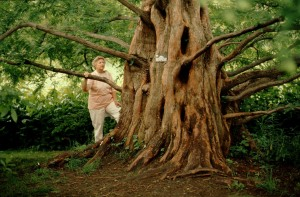 bk41natsequoia3