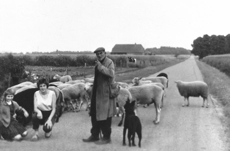 herder-ploeg-02 - kopie (2)
