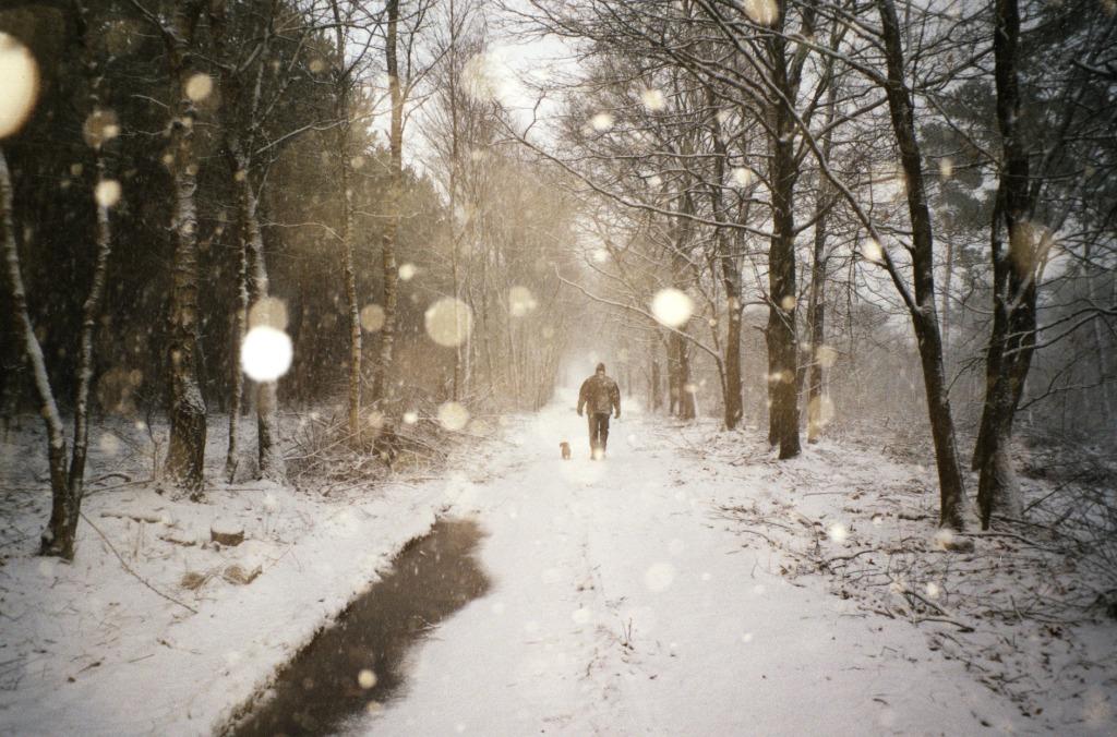 corne-sneeuw-rakker - kopie