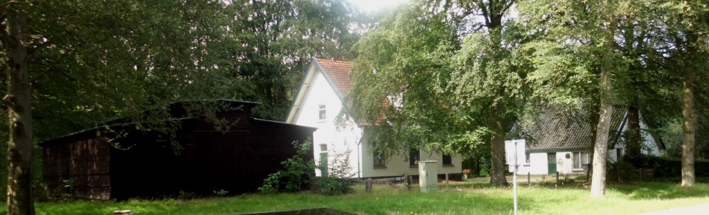 RM523203-523205_Wolweg_79