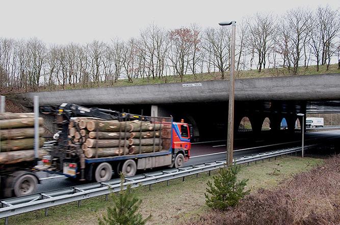 HRT.5. Vracht hout onder wildwissel Terlet - kopie
