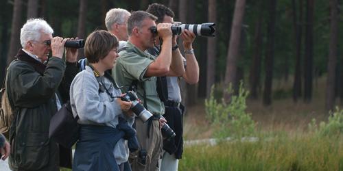 De Hoge Veluwe - Boswachter Henk Ruseler op Safari1_NP De Hoge Veluwe