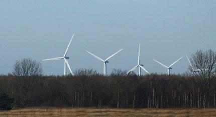 WindmolensInHetBos2