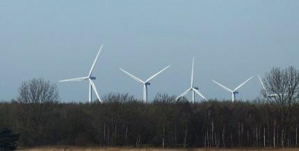 WindmolensInHetBos2 nieuw