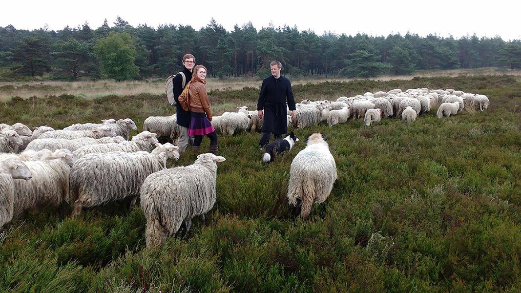 2016-06-14 Chris en Dinja bij schapen Elspeet 31