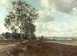 Heidelandschap_Jan_van_Vuuren