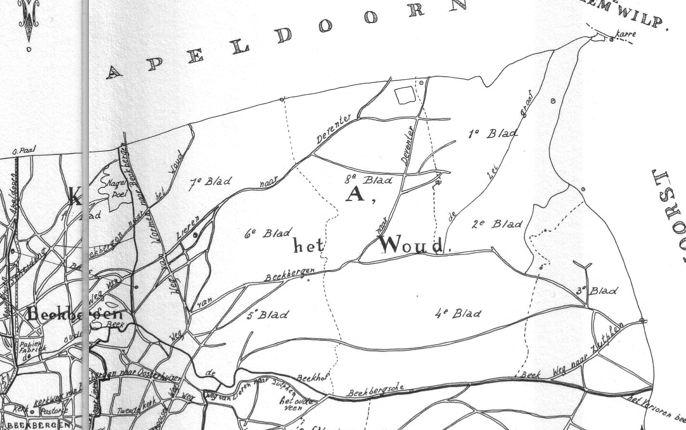 Het 'Woud' bij Beekbergen in 1832 - Kaart Archief Schimmel