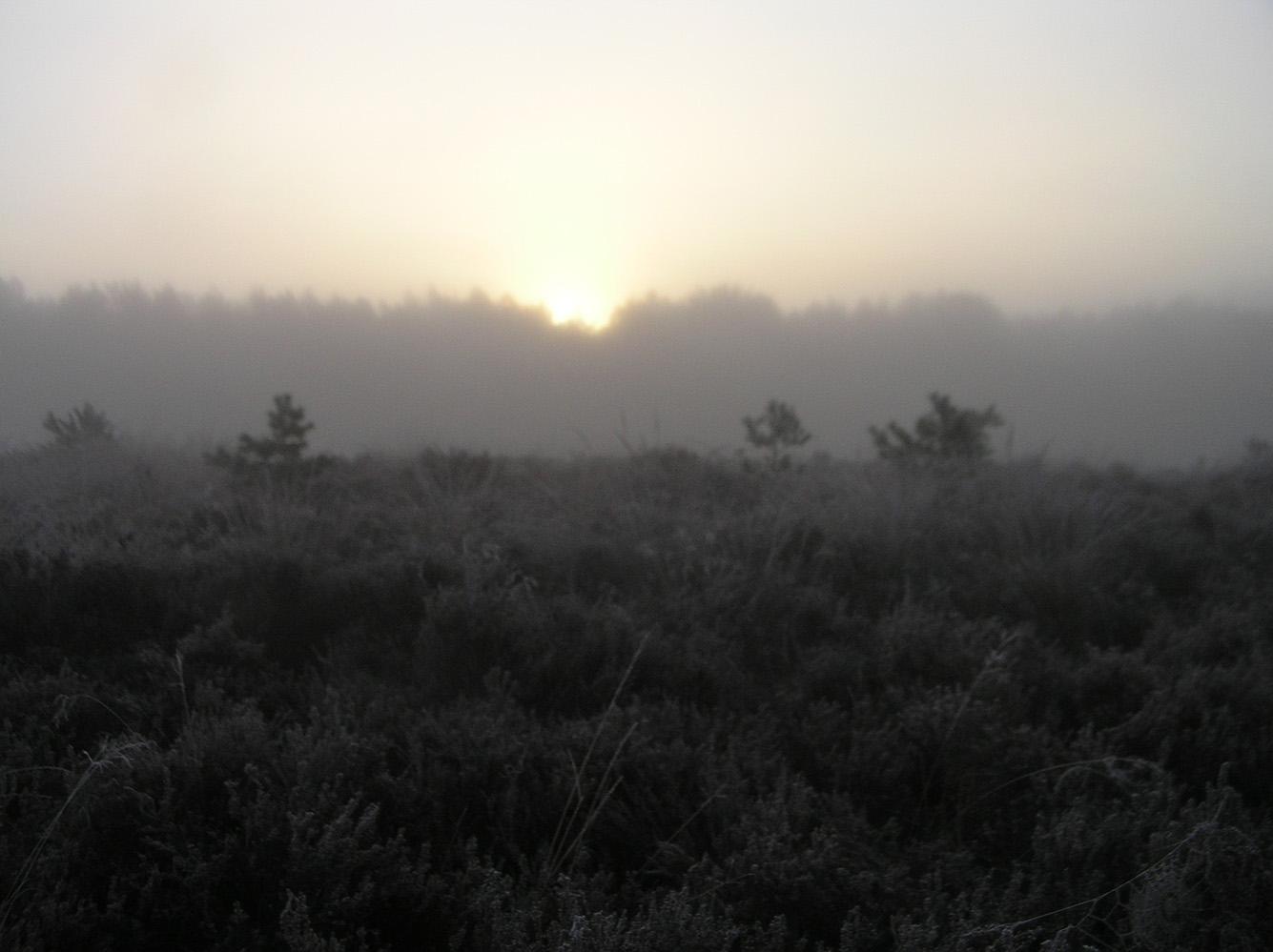 De vroege ochtendzon gloort boven de kim - Foto: Christien Mouw