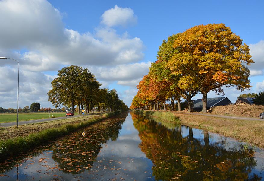 6-dc_6931Een schitterend gezicht vanaf de Coldenhovense brug richting Loenen - Foto: Louis Fraanje