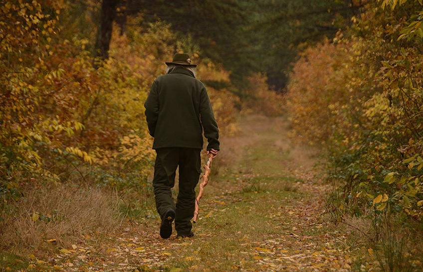 Een Veluwse woudloper in de bossen van Texel - Foto: Fransien Fraanje