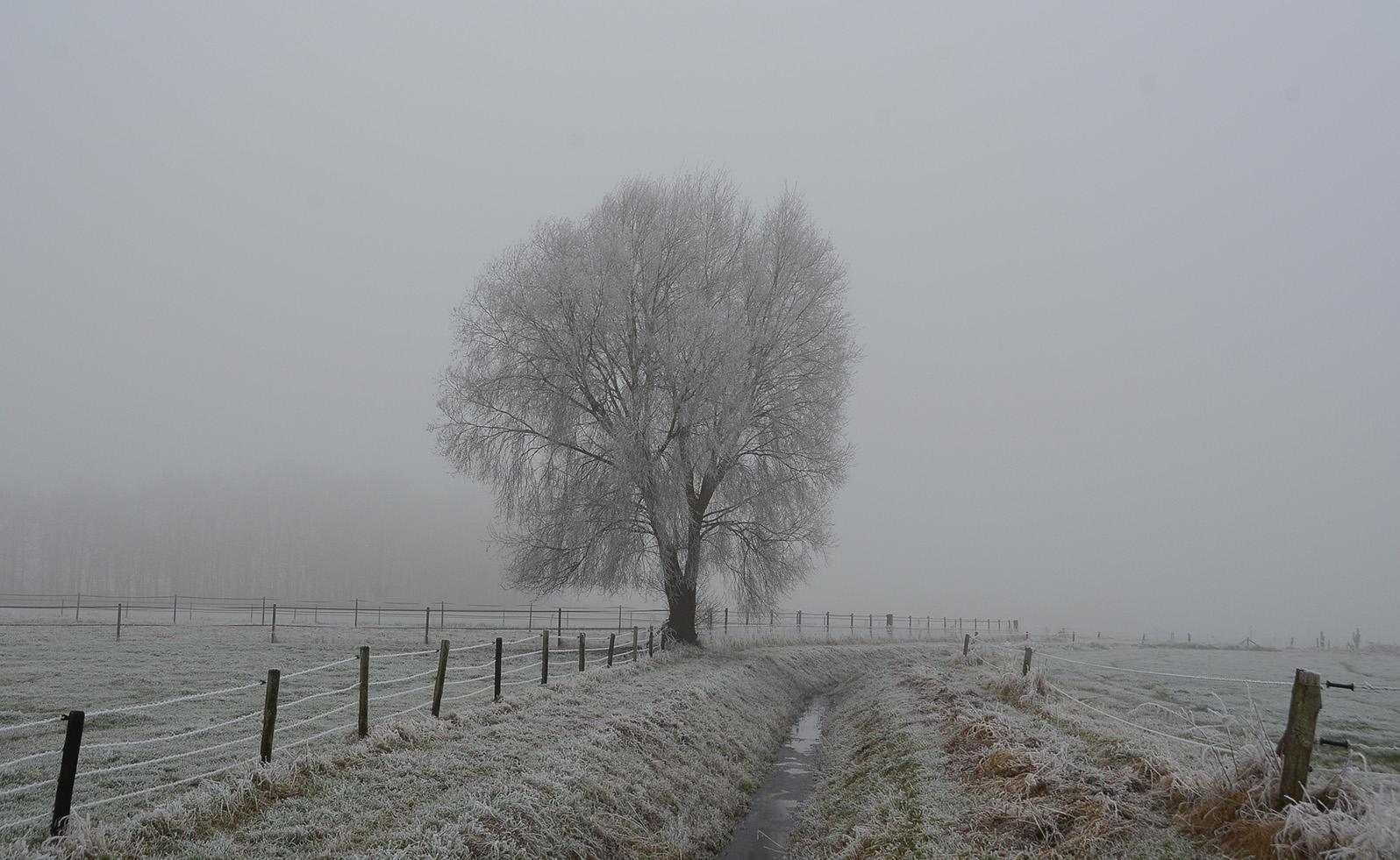 dc_0290Een mooi winters landschap op de Veluwe - Foto: ©Fransien Fraanje Filosofische kant