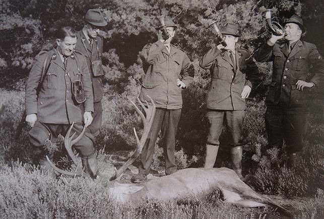 Geschoten hert wordt 'doodgeblazen' door de jachtopzieners(vlnr) Bosbaas Besselink?, Chef Faunabeheer Lou Wetzels, Eb Curré, Jan Venema en Jaques Planta - Foto: Archief Jan Venema