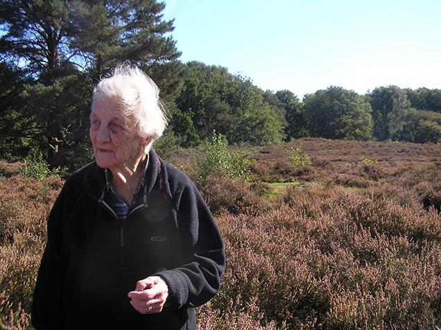 Herderin 'Koos Vos' verknocht aan haar Veluwse heide en schapen - Foto: Gonny Livestroo
