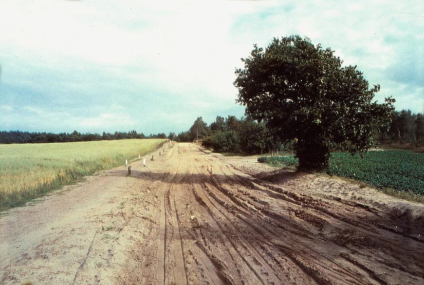 De oude Hessenweg bij Lunteren in 1961, tooen nog zandweg - Foto: ©JGS/A.P. Valkenburg (†)