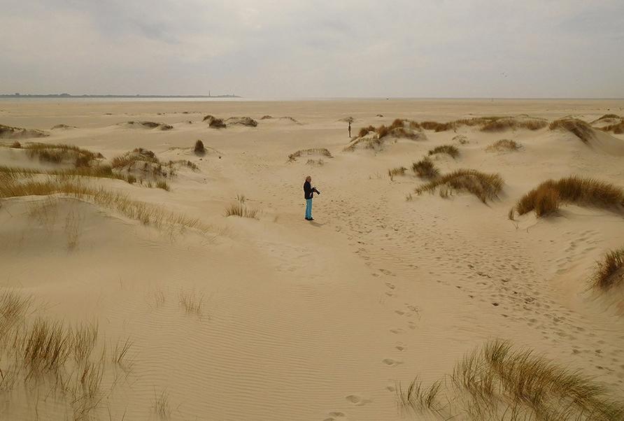 Fransien als een kleine stip in de verlatenheid van de duinen - Foto: ©Louis Fraanje