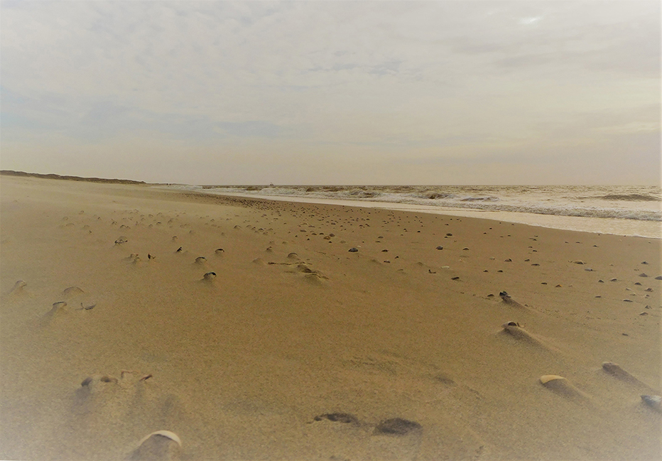 Het strand waar aan de horizon de golven de kustlijn raken - Foto: ©Louis Fraanje